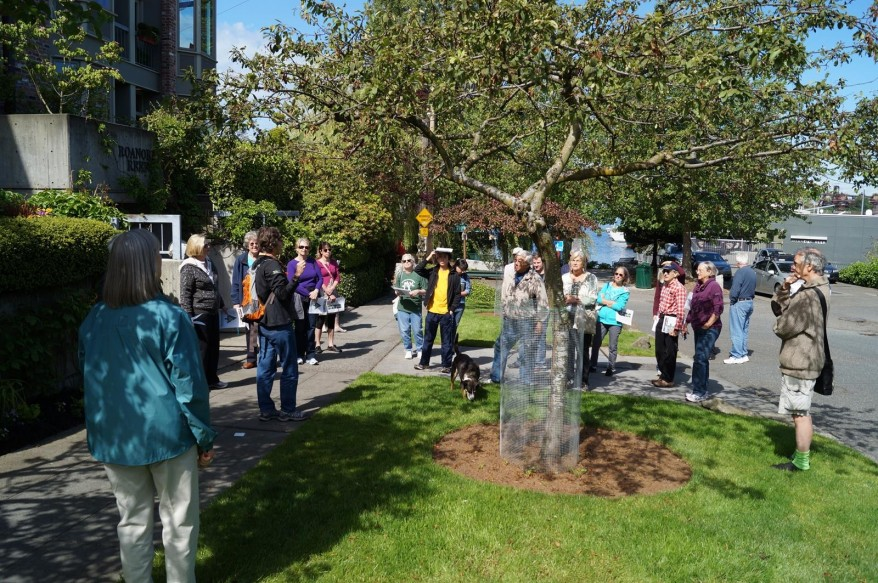 A nice sunny morning to learn about Weeping Crabapple trees