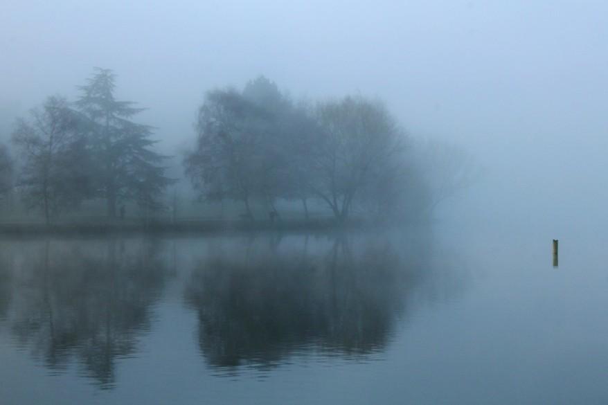 Foggy Green Lake by Scott Cooper