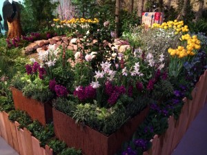 Herbs peek out from under hyacinth in this display garden from Oliana. Credit: Oliana.