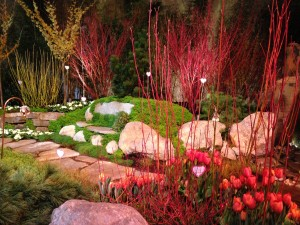 Osier dogwoods showing off amid lime-green moss at the Northwest Flower and Garden Show in February Image, Erica Grivas